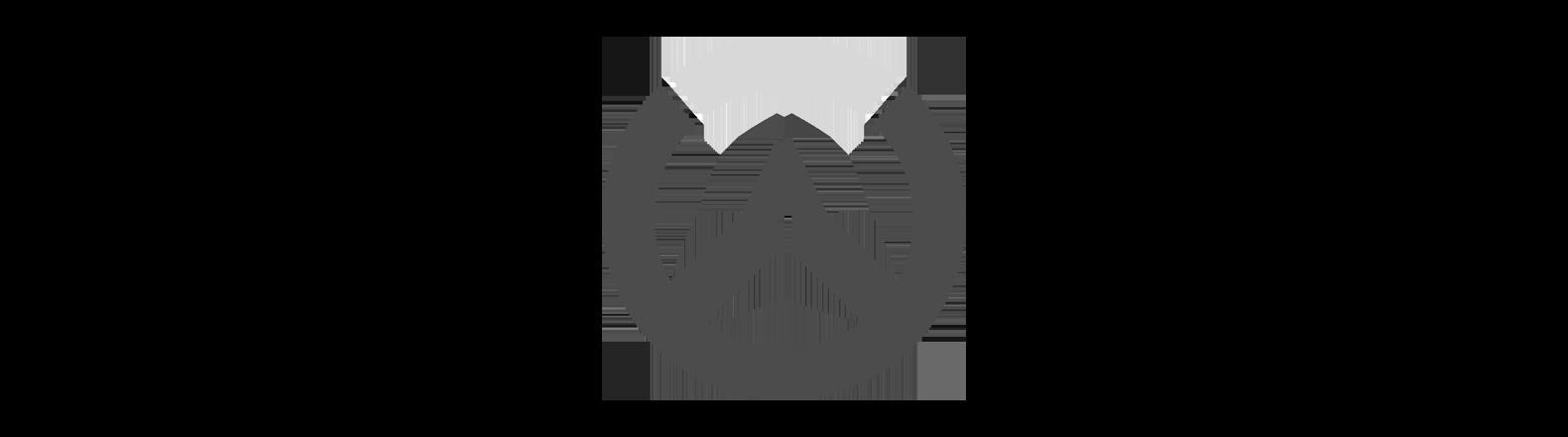 http://Overwatch