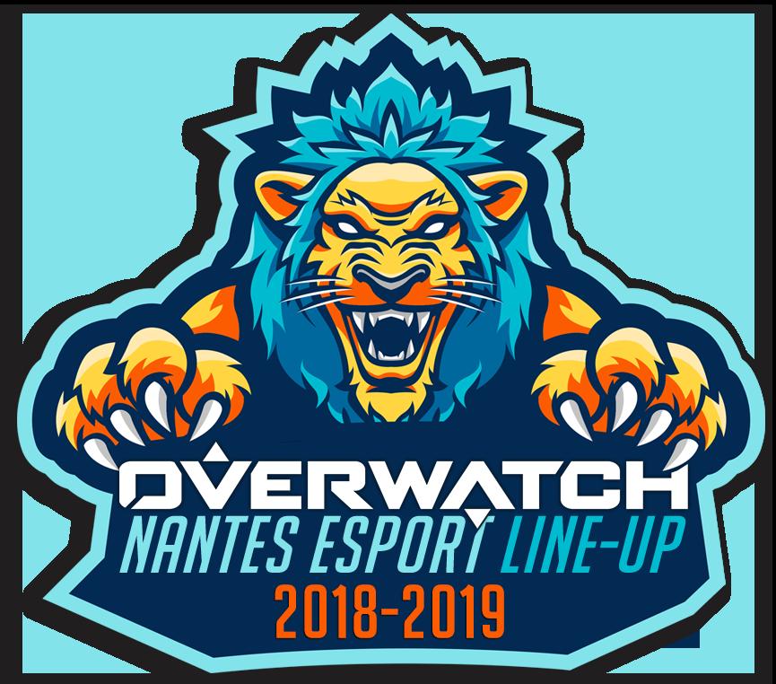 Nantes Esport Overwatch Pro